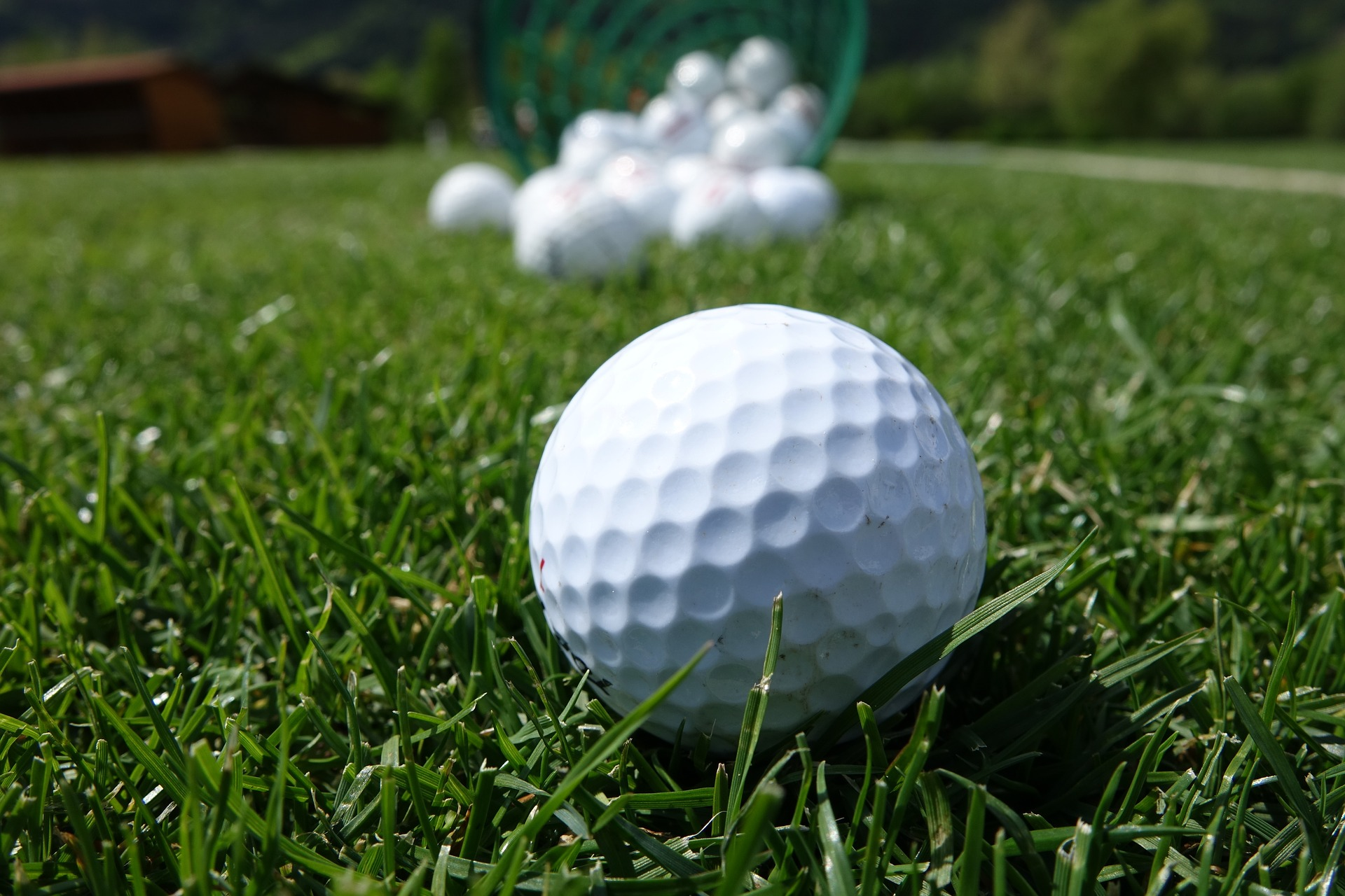 what beginners should know about picking the best golf ballgolf
