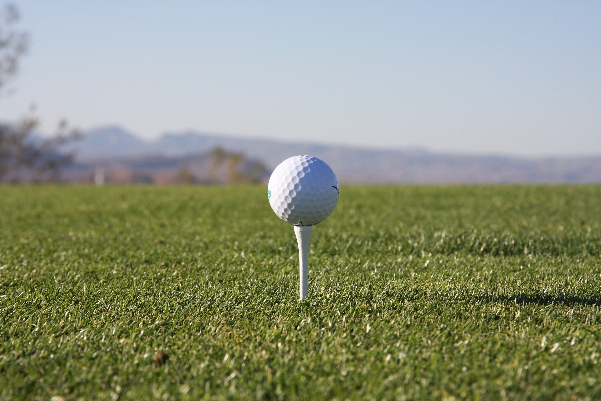Little known facts about the golf tee with the academy of golf dynamics