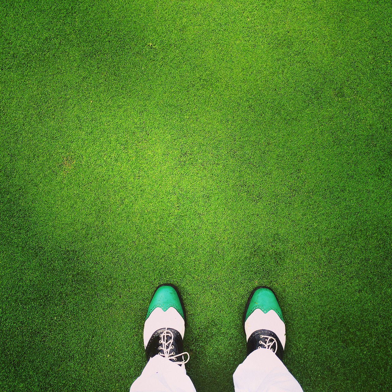 Golf shoes on a green